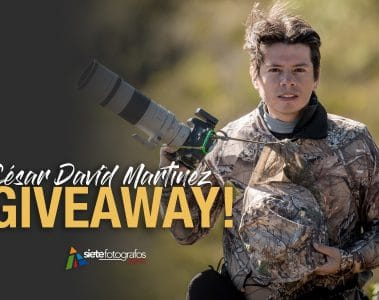 giveaway - césar david martinez- curso online